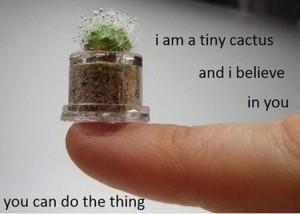 Monday - Tiny Cactus
